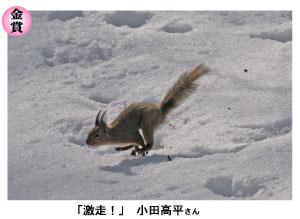 gekisou.jpg
